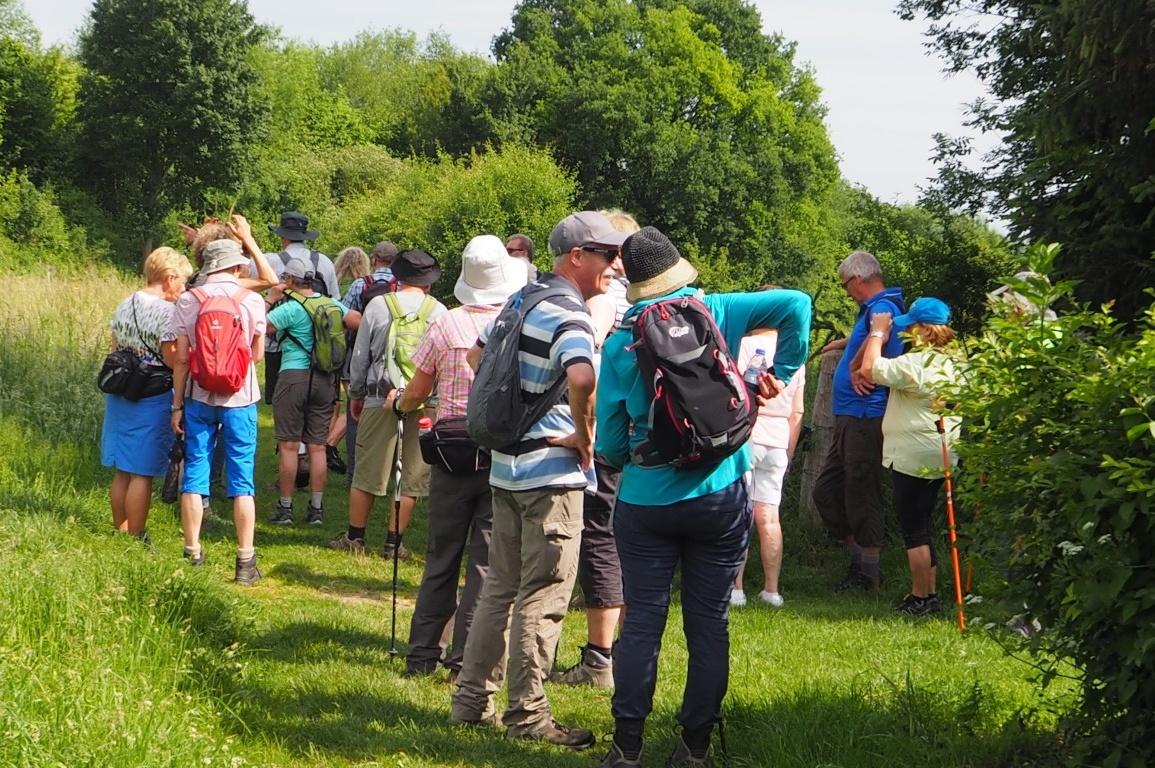 Gezellige gesprekken tijdens de wandeling - deWandelgroepEuregio