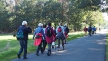 Wandeling Neeroeteren - deWandelgroepEuregio